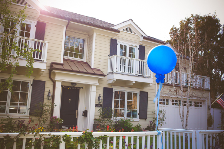 First birthday party, Pacific Palisades, Snap Dragons, first birthday photography