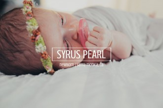 syrus-pearl-template