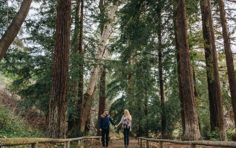 Fern and Jack Engaged | Santa Barbara, CA